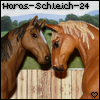 Photo de Haras-Schleich-24