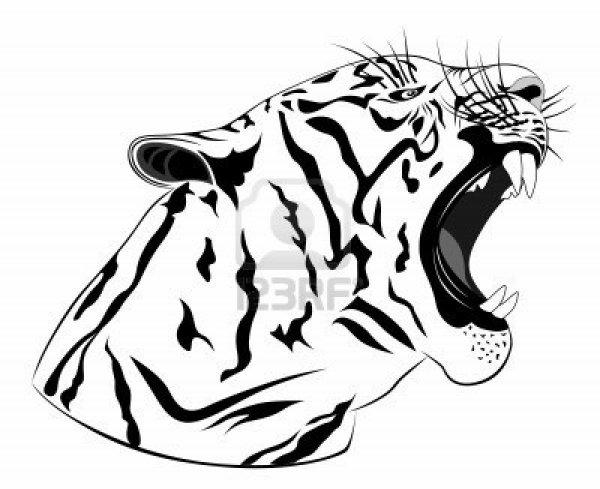 je kiffe les tigres