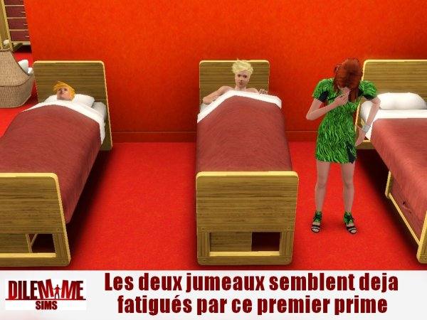 Dilemme Sims / Quotidienne 1 / Partie 1