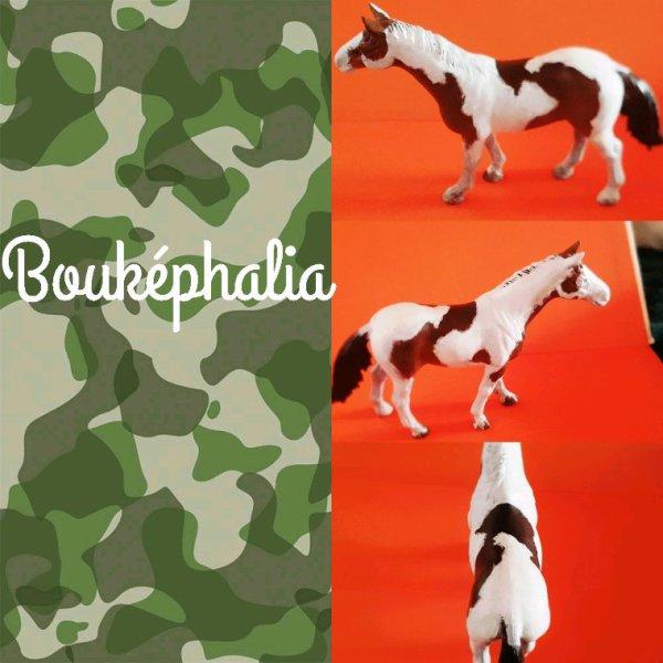 Bouképhalia