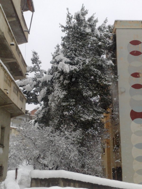 mercredi 08 février 2012 17:40
