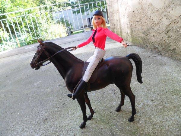 Barbie cavaliere titine baigneurs et poupees anciennes - Barbie et son cheval ...