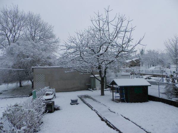 ♥ Ƹ̵̡Ӝ̵̨̄Ʒ ●   1ere neige ♥ Ƹ̵̡Ӝ̵̨̄Ʒ 10e