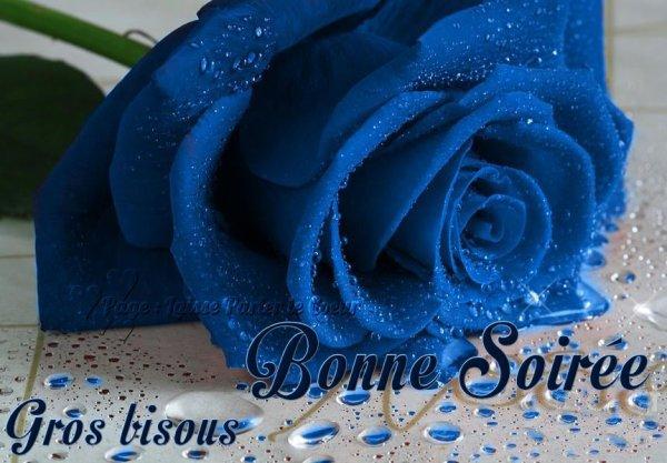 ♥ Ƹ̵̡Ӝ̵̨̄Ʒ ● bonne soiree  ♥ Ƹ̵̡Ӝ̵̨̄Ʒ