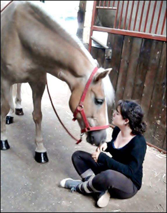 Le plus parfait des poneys. ♥