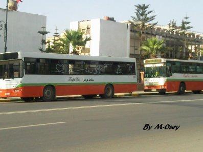 _- Foughal Bus -_ Le bus De Berkane