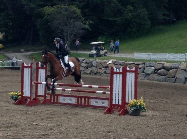 Compétitions à cheval#1 (désoler des photos embrouiller :( ..)