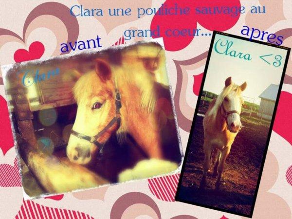 Montage de Clara pouliche, à, maintenant!! (Fait par mon amie)