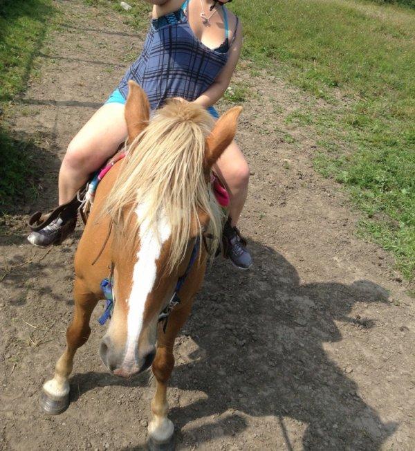 La fin de semaine passé avec mes chevaux et mon amie ❤️