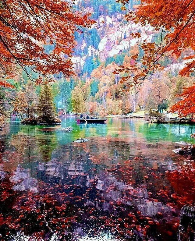 Couleur d'automne.......