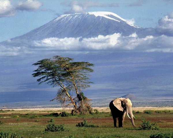 Le Kilimandjaro 5895 mètres en Tanzanie, Afrique.....
