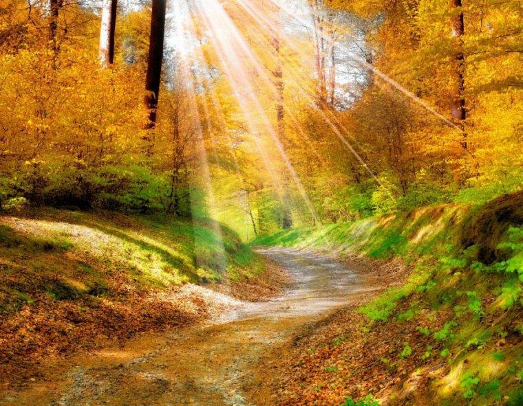 Vous avez aimé couleur d'automne, en voici d'autres rien que pour vous.....