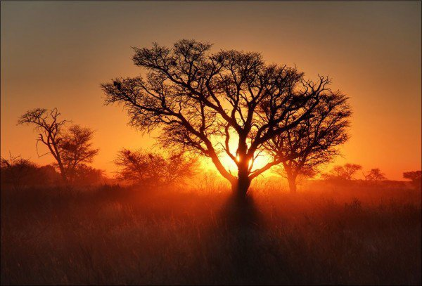 Coucher de soleil n°5 sur le désert du Kalahari, Afrique.....
