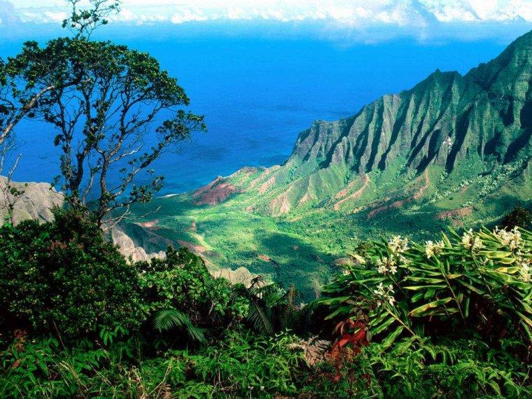 Les îles d'Hawaii, Pacifique Sud..... côté beauté.....