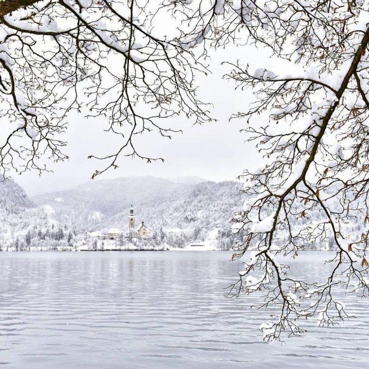 La petite Île de Bled en hiver, magnifique ! Lac de Bled, Slovénie.