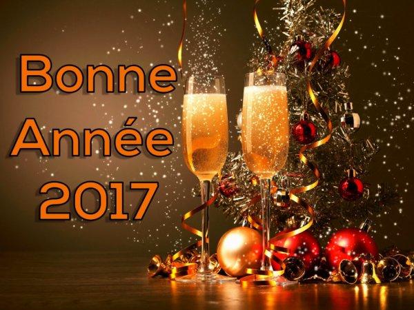 Bonne année 2017 à toutes et tous....