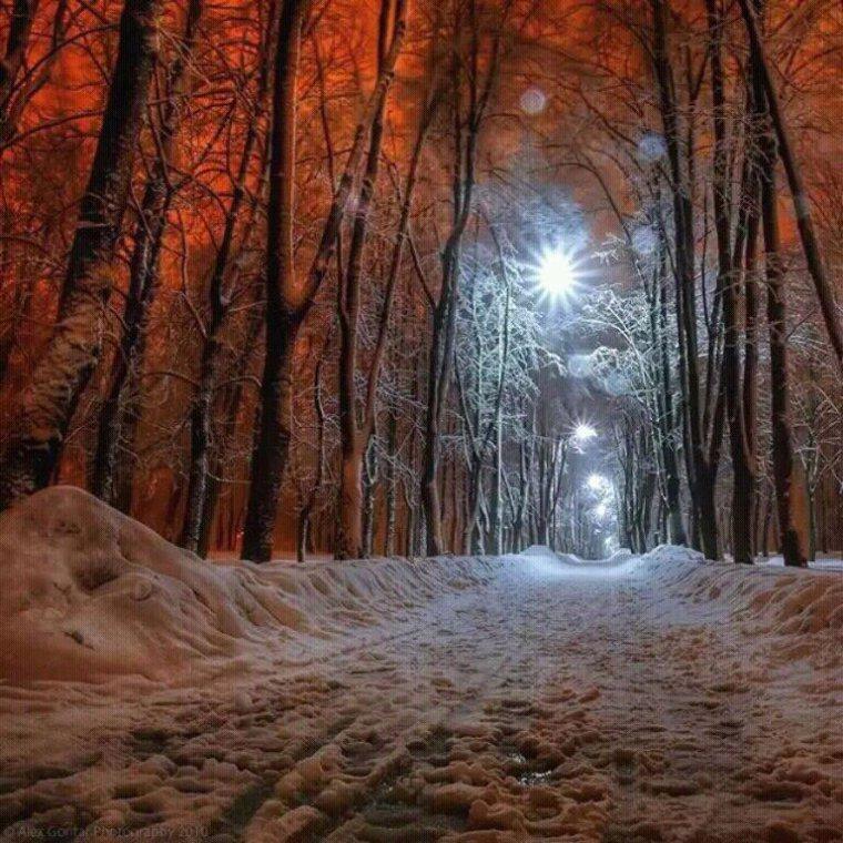 Chemin Hivernal....
