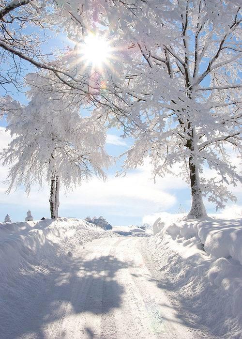 Soleil d'hivers......
