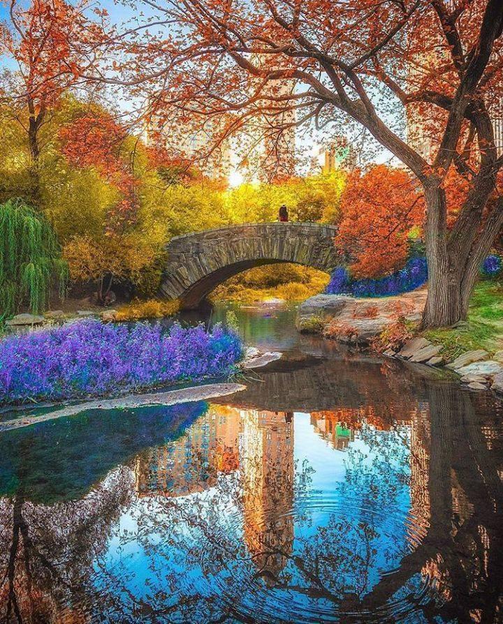 Les ponts de Central Park à New-York.......