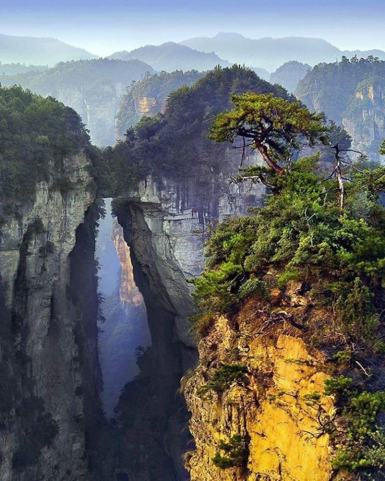 Parc Forestier National de zhangjiajie, Chine....