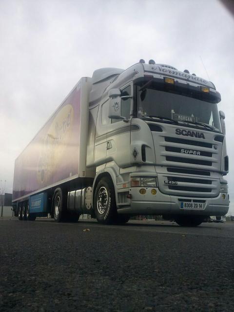 Scania de Morgan avec les feux jaunes mis sur la casquette ( Transports Lingèvres)