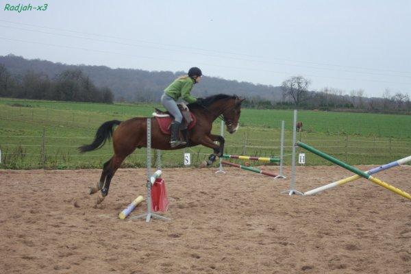 Bébé poney apprend à sauter.. !