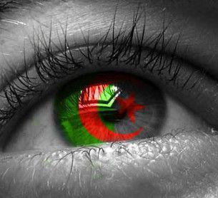 ALGERIA FORZA ALGERIA 1 2 3 viva l'ALGERIIE rouge = sang-vert = la liberté-blanc = la paix