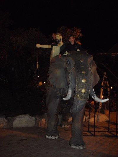 sur l'éléphant^^
