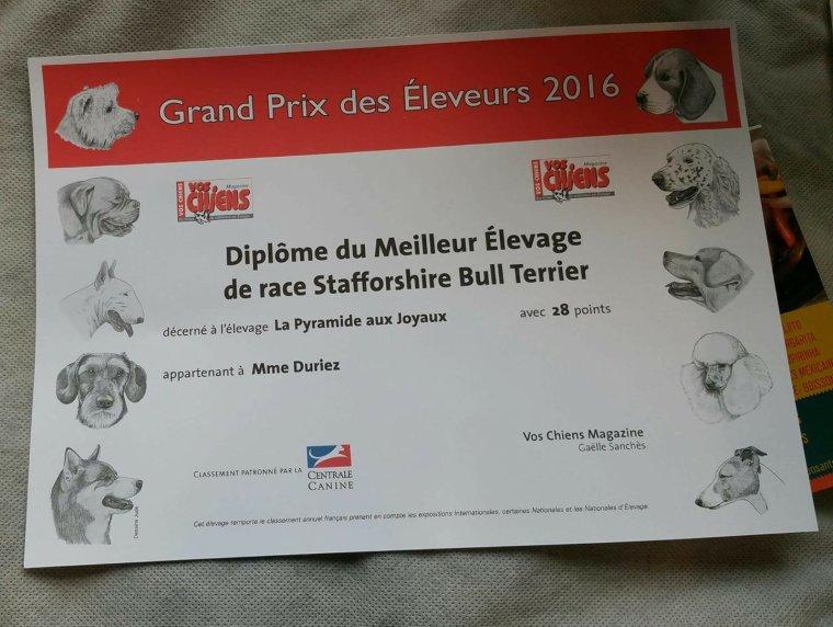 Best breeder 2016 : la pyramide aux joyaux et 2eme en 2017