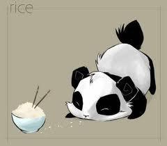 Panda. <3