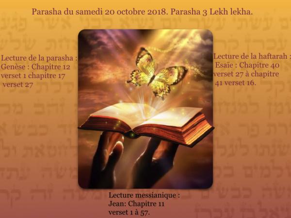 Parasha du samedi 20 octobre 2018 . Parasha 3 Lehk  Lekha.