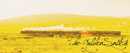 The-GoldenSnicht.