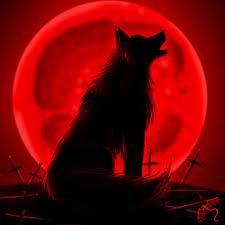 th wolf 's bark