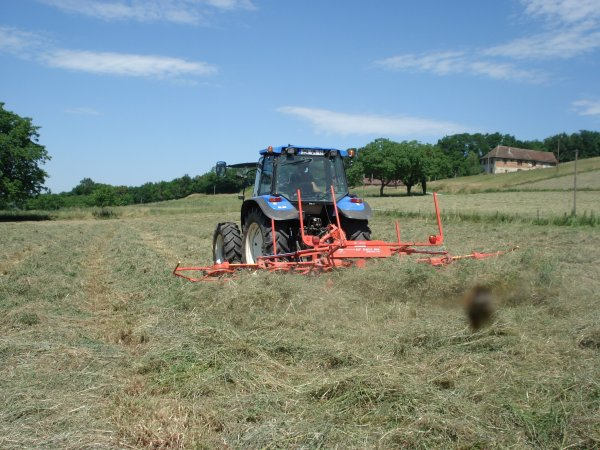 fanage de foin avec new holland ts100 plus faneuse khun 6 toupie