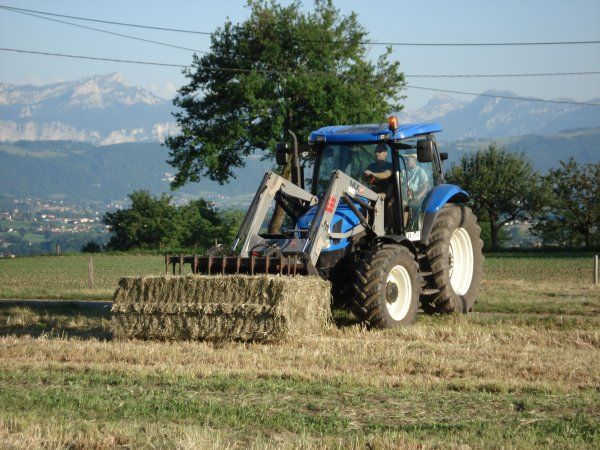les botte on été faites parle fend 415 vario 150 ch de la cuma avec une presse class quadrante 2200 (mais pas pu prendre photo) doc maintenant il faut les ramasser avec le new holland tsa110 plus chargeur mx 8 plus char a botte hauswirth