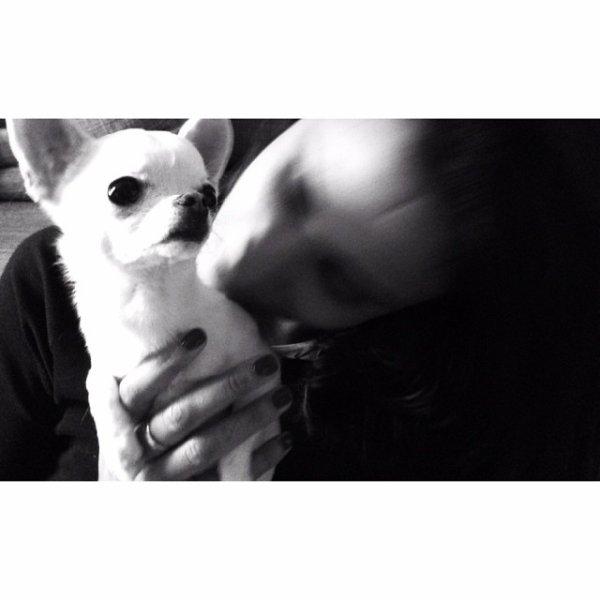 Shimi & Warhol... ♥ Ils sont trop mignon... ♥