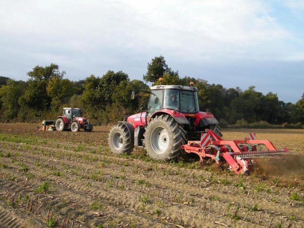 Semis de blé 27 Octobre 2010