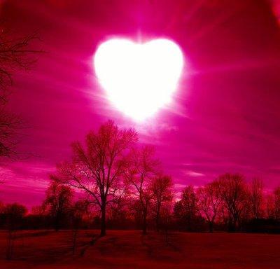 l'amour en gentisssie