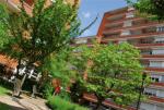 CHARENTON    Henri Sellier             179    logements