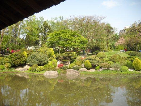 Mardi 23 Avril 2013 et Jeudi 25 Avril 2013 ballade jardin des plantes et jardin japonais