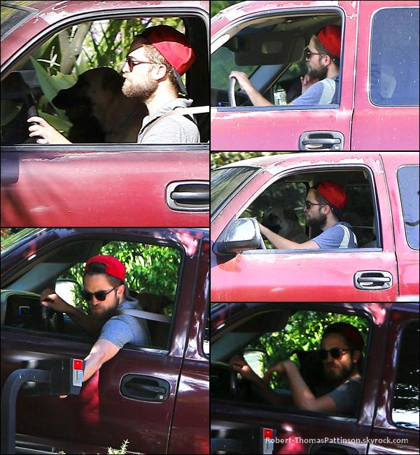 19/05/13:            Robert et ses toutous Bear et Bernie ont été aperçu à Los Feliz dans LA.