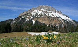 L'ASPTT Nice à l'Ultra Trail des 4 Massifs - UT4M (Grenoble - 38)