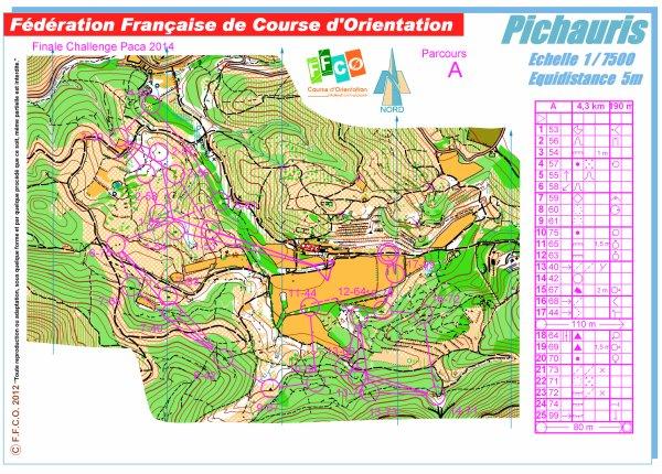 Finale du Challenge PACA de Course d'Orientation 2014 - Pichauris (13)