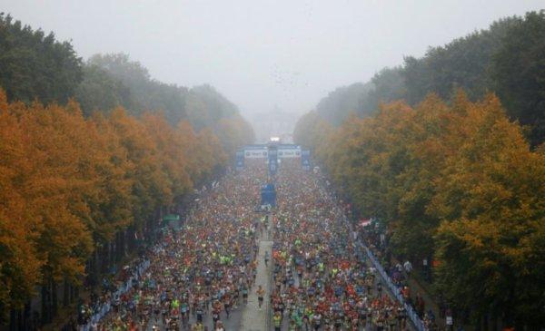 Marathon de Berlin 2017 - Nicolas Dalmasso sous les 2h30'
