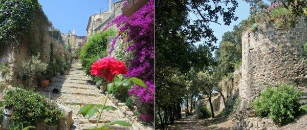 Aviva Trail de Hyères 2017 - Un trail urbain à succès