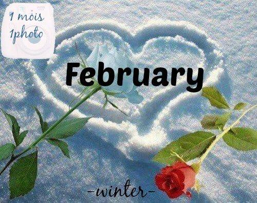 1 mois une photo/ Février