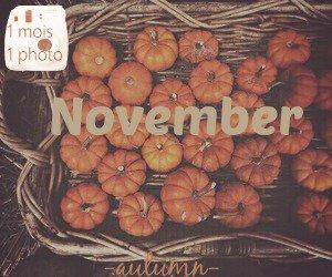 1 mois 1 photo → Novembre