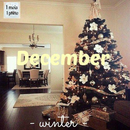 1 mois 1 photo → Décembre