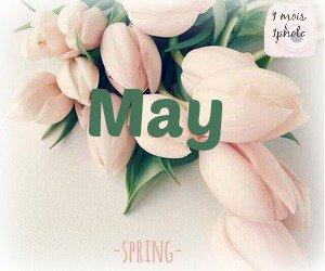 1 mois 1 photo → Mai & Juin