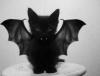 🎃 {Le mois de la peur} DIY d'Halloween 👻
